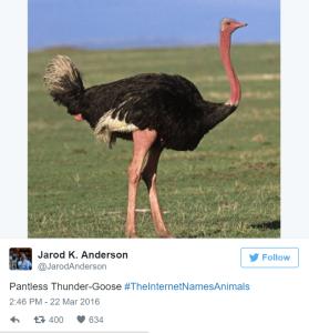 pantsless thunder goose